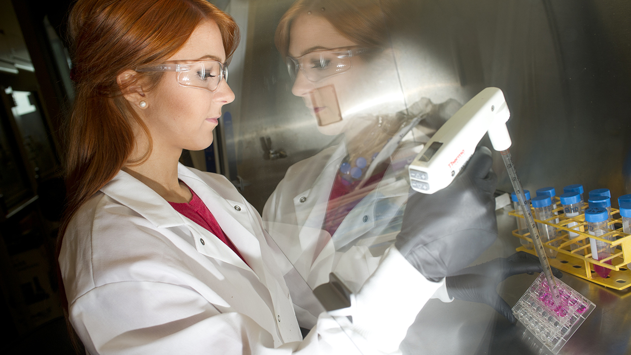 A graduate student in bioengineering works in the lab.